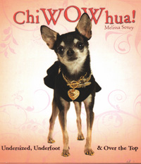 PURCHASE ChiWOWhua Now!