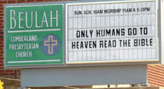 CHURCH SIGNS DEBATE WHETHER DOGS GO TO HEAVEN | TheDogPress