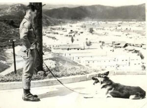 "CHARLES ""SKIP"" HERENDEEN - TRAINING MILITARY SENTRY DOGS"