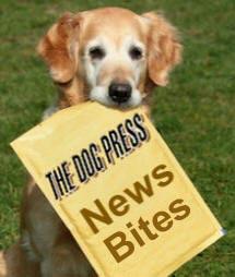 THE DOG PRESS NEWS BITES