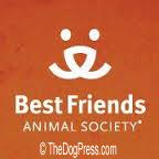 Best Friends Animal Sanctuary The Process Church Connection