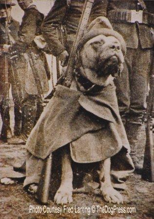 Civil War hero Jack in full gear